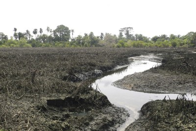 Shell oil spill at Goi, Ogoni Land, Niger Delta.