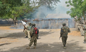Villages Torched as Cameroon Troops Clash With Separatists