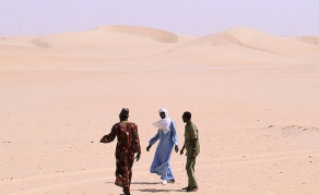 UN Agency Rescues 600 Stranded Migrants in Sahara Desert