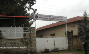 Who's to Blame for Ailing State of Ethiopia's Public Hospitals?