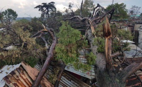 Disaster Relief for Gauteng After Storms Devastate South Africa