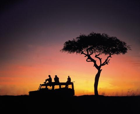 Safari Packages in Kenya