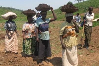 Rwanda: Des femmes agricultrices