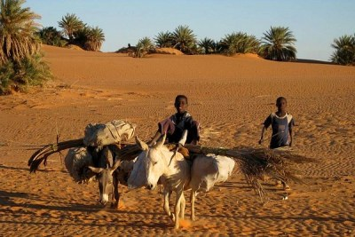 Fada, capital of northern region Ennedi in Chad.