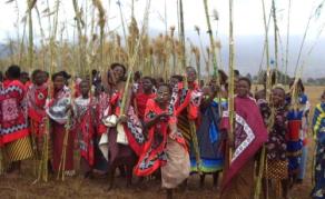 La danse des roseaux endeuillée en Swaziland