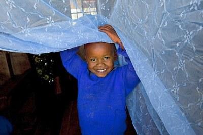 Un enfant sous un moustiquaire.