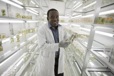 Joseph Ndunguru works at the Mikocheni Agricultural Institute in Dar es Salaam.