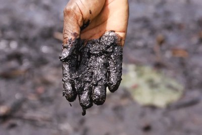 Pastor Christian Lekoya Kpandei's hand covered in oily mud, Bodo Creek, in 2011. His fish farm once provided a living for about 30 families. Its collapse forced him to move to a single-room apartment, to pull his youngest child out of school and left him with no regular source of income.
