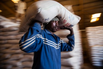 A World Food Programme (WFP) staff member loads bags of split yellow peas into a truck in a WFP warehouse based in El Fasher, North Darfur, for delivery and distribution at camps for displaced persons (IDPs) in Shangil Tobaya, North Darfur.