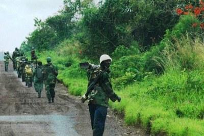 Des Casques bleus de la MONUSCO escortent des combattants du M23 qui se sont rendus dans le Nord-Kivu.