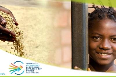 Sommet des Nations Unies de 2015 sur le Développement Durable