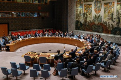 The United Nations Security Council holds a meeting on Sudan and South Sudan (file photo).