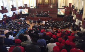 10e5a140e359e South Africa  ANC Man Offered Us Bribes to Vote for Them On Joburg City  Council - EFF