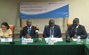 CEA - Le renforcement des synergies au menu de la réunion annuelle du MSRC