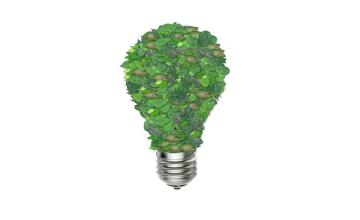 Kenya, Ethiopia, Nigeria Leads Way In Growing Green Economy