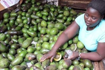 A trader selling avocados at Kangemi market in Nairobi (file photo).