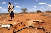 COP24 - L'Afrique plaide pour une feuille de route