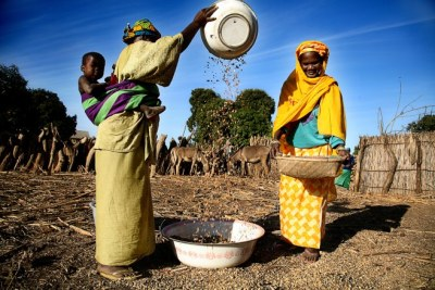 Women at work in Nigeria.