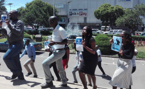 Journalists Protest Against Police Brutality in Zimbabwe