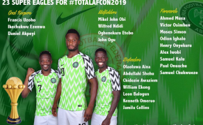 'Super Eagles Will Fight Hard To Win AFCON 2019 Title'