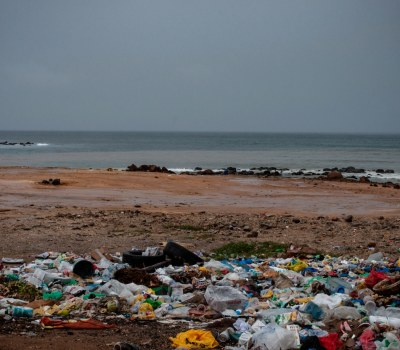 Surfer Launches Dakar's First Zero-Waste Restaurant