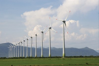 wind farm (file photo)