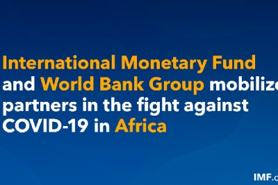 IMF and World Bank mobilize partners in the fight against COVID-19