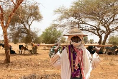 Des centaines de milliers de personnes vivant au Burkina Faso sont en situation d'insécurité alimentaire.