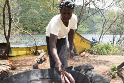 Miriam Nabwire from Busia County, fries fish caught at Turkwel Dam in West Pokot County at the shores of the dam on October 29.