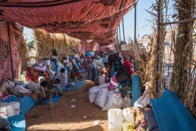 Living conditions for Tigrayans who fled the border from Ethiopia into Sudan.