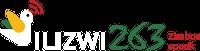Ilizwi263 (Hilversum)